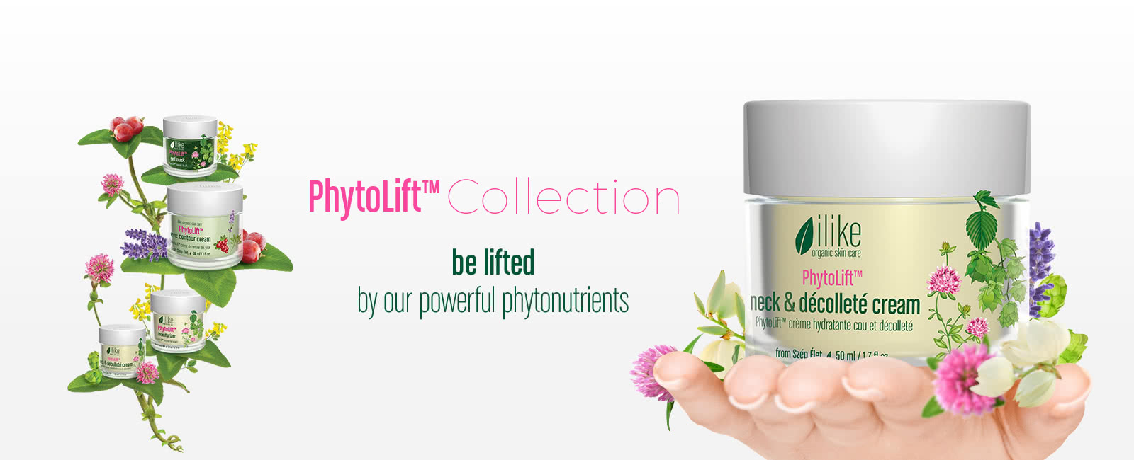 PhytoLift™ Collection – Be Lifted By Our Powerful Phytonutrients